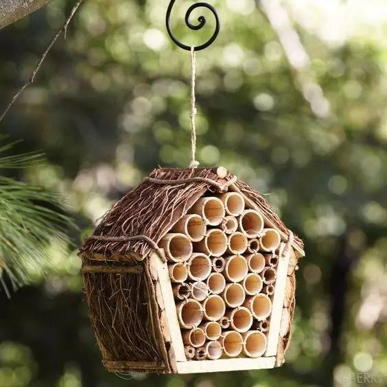 10 Easy DIY Bamboo Craft Ideas That Will Inspire You