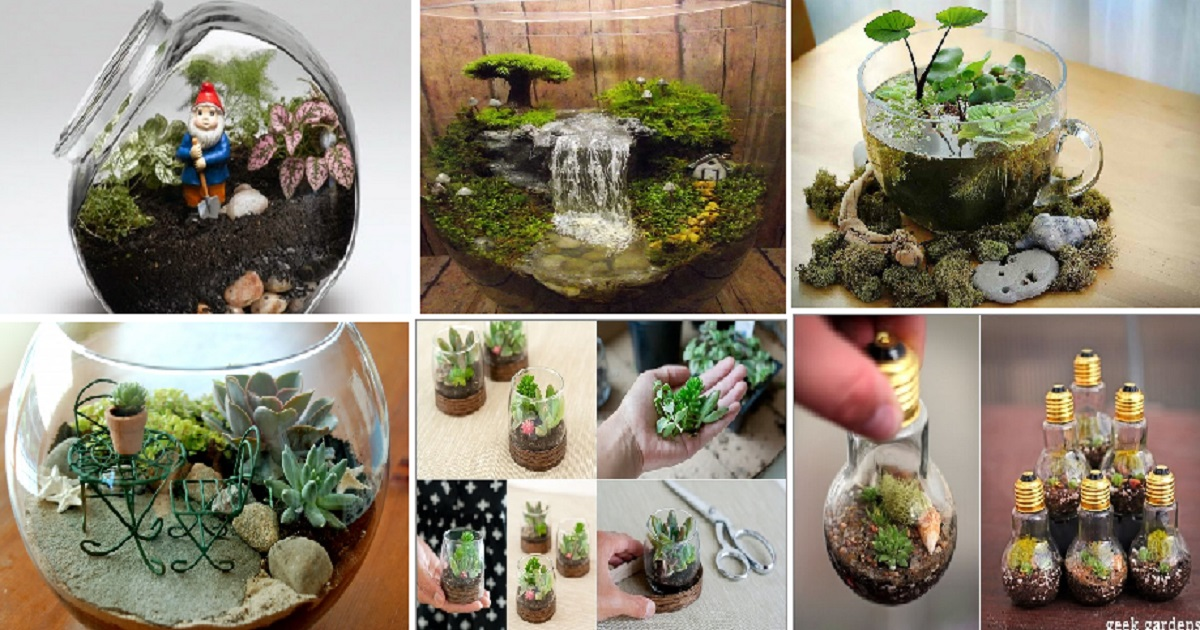 10 Stunning Miniature Terrarium Ideas For Your Indoor Areas Genmice
