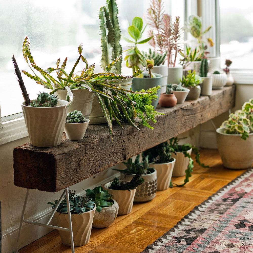 12 Amazing Plant Stand Ideas That Are Quite Magical For ... on Amazing Plant Stand Ideas  id=76725
