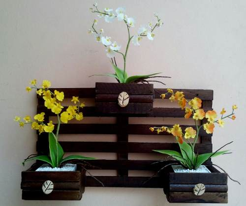 Kitchen Plant Shelf Decorating Ideas: 15 Inspiring DIY Beaming Plant Shelves Ideas, That Will