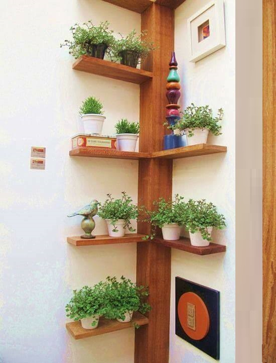 15 inspiring diy beaming plant shelves ideas, that will make your interior wall stunning - genmice