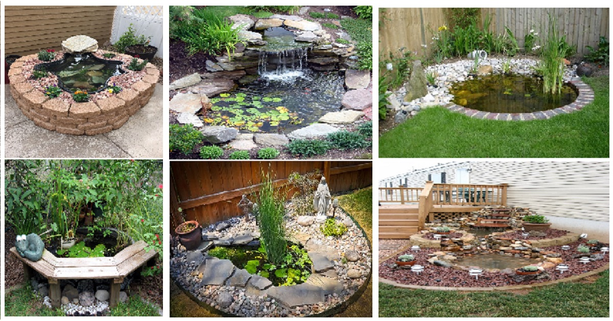innovative garden fish ponds designs | Give An Innovative Pond Look To Your Garden Areas - Genmice