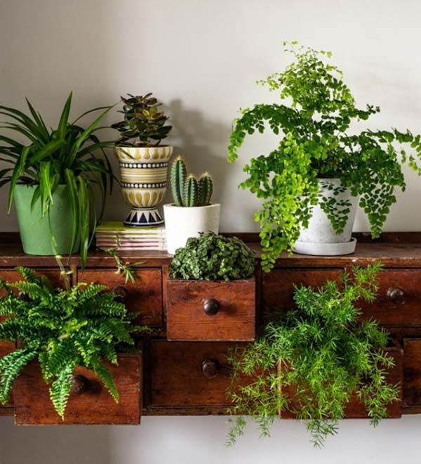 Well One Of The Most Important You Can Do With Your Indoor Gardens Ideas That Create Or Diy It Different And Give Look To