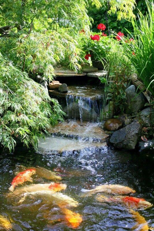Japanese Garden Ideas Backyard Beautiful